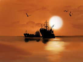 Volpi, asini e aquile nella flotta Umanità