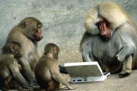 La tecnologia è il modo dell'umano di stare al mondo:  difficile distinguere dove finisce l'una e inizia l'altro.