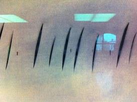 Non vivremo necessariamente in un mondo distopico, ma sicuramente più disumano