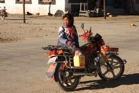Per chi ama Haruki Murakami