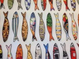 La gentilezza delle sardine