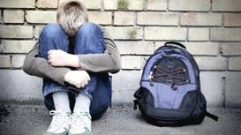 Cyberbullismo scolastico: suggerimenti e buone pratiche