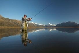 Vai a pesca per evitare di farti pescare online