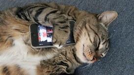 Gli smartphone del futuro