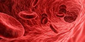 Coronavirus e ricerca scientifica