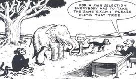 Una riflessione sulla meritocrazia