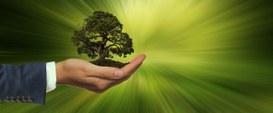 Ancora poca sostenibilità
