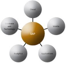 SAP, Windows 8 e soluzioni di Business Intelligence