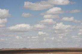 Il cloud nel retail