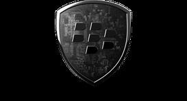 Sicurezza, BlackBerry e supporto pre-vendita (pre-sale)