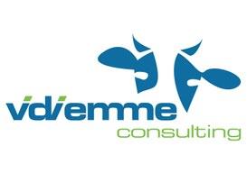 Vidiemme Consulting: Digital Marketing & Mobile Solutions