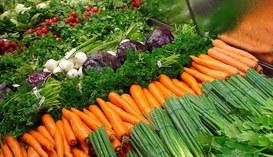 Alla Food Hackathon di Torino vince l'agricoltura di precisione