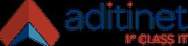 Palo Alto Networks premia Aditinet