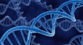 I dati archiviati non durano per sempre: il DNA sintetico come storage futuro?